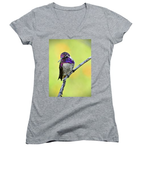 Costas Hummingbird  Women's V-Neck T-Shirt