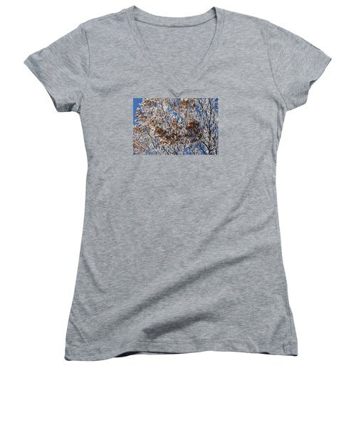 Women's V-Neck T-Shirt (Junior Cut) featuring the photograph Hoar Frost by Dacia Doroff