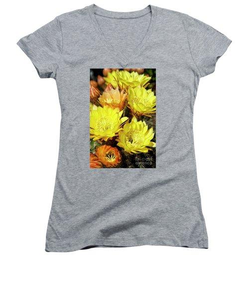 Yellow Cactus Flowers Women's V-Neck T-Shirt (Junior Cut) by Jim and Emily Bush