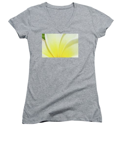 Plumaria Women's V-Neck