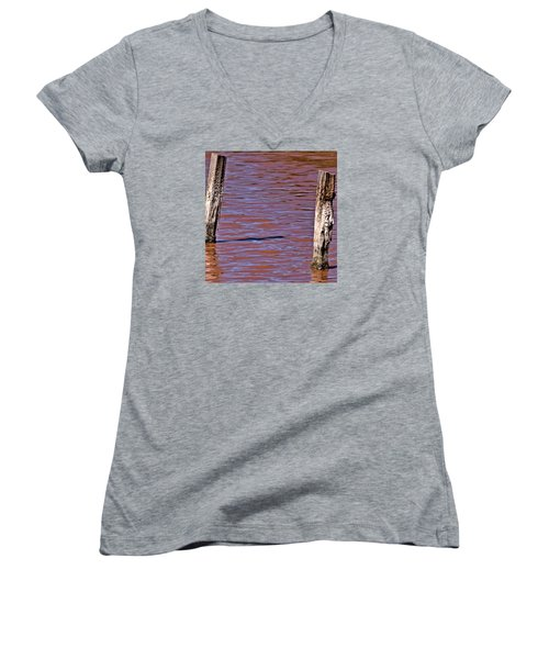 Primordial Soup Women's V-Neck T-Shirt