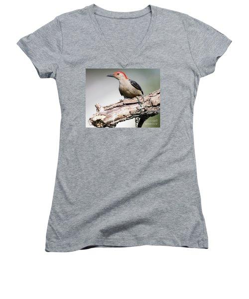 Red-bellied Woodpecker Women's V-Neck