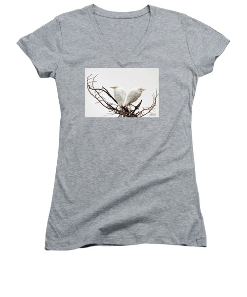 A Basket Of Anger Women's V-Neck T-Shirt (Junior Cut) by Cyndy Doty
