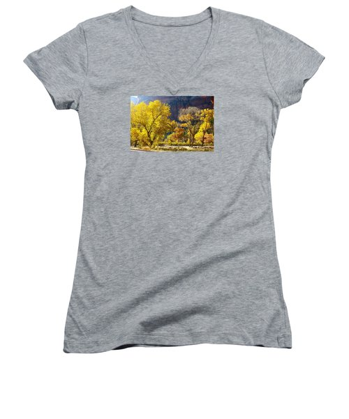 A Bright Gathering Of Trees Women's V-Neck T-Shirt