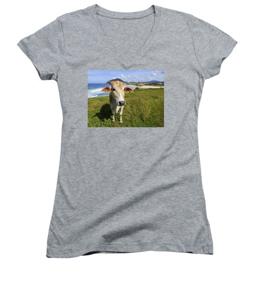A Cow At The Beach Women's V-Neck