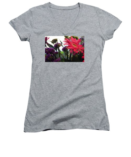 A Daisy And Friends Women's V-Neck T-Shirt