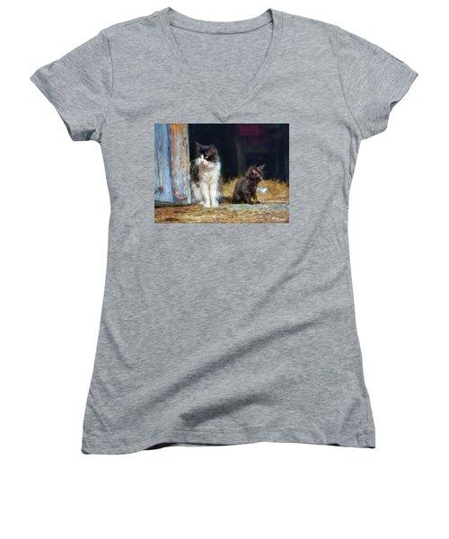 A Day In The Life Of A Barn Cat Women's V-Neck