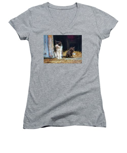 A Day In The Life Of A Barn Cat Women's V-Neck (Athletic Fit)