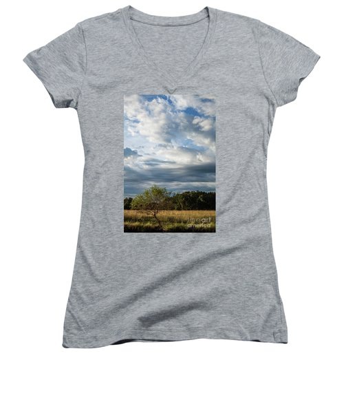 Women's V-Neck T-Shirt (Junior Cut) featuring the photograph A Day In The Prairie by Iris Greenwell