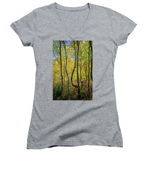 Women's V-Neck featuring the photograph A Day In The Woods by Scott Read