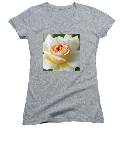 A Delicate Rose In Peach Women's V-Neck