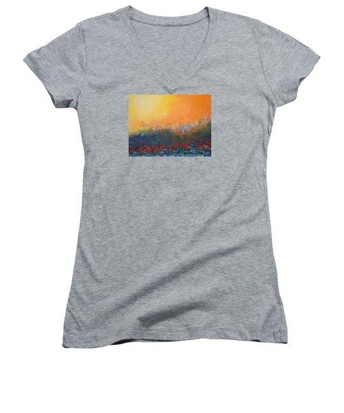 A Field In Bloom Women's V-Neck T-Shirt (Junior Cut) by Dan Whittemore