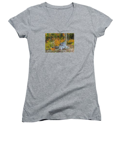 A Forest Of Color Women's V-Neck T-Shirt