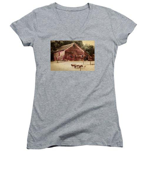A Grazy Day Women's V-Neck T-Shirt