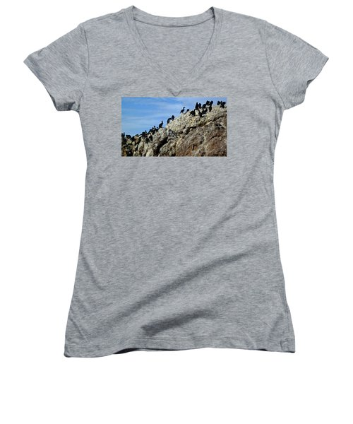 A Gulp Of Cormorants Women's V-Neck T-Shirt (Junior Cut) by Sandy Taylor