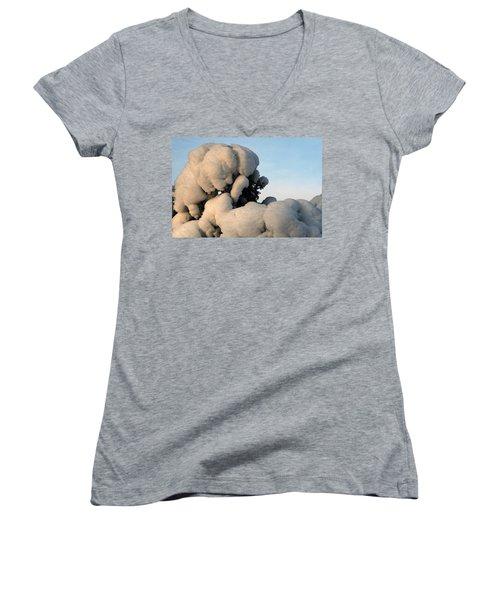 A Lick Of Snow On The Bush Women's V-Neck T-Shirt (Junior Cut) by Paul SEQUENCE Ferguson             sequence dot net