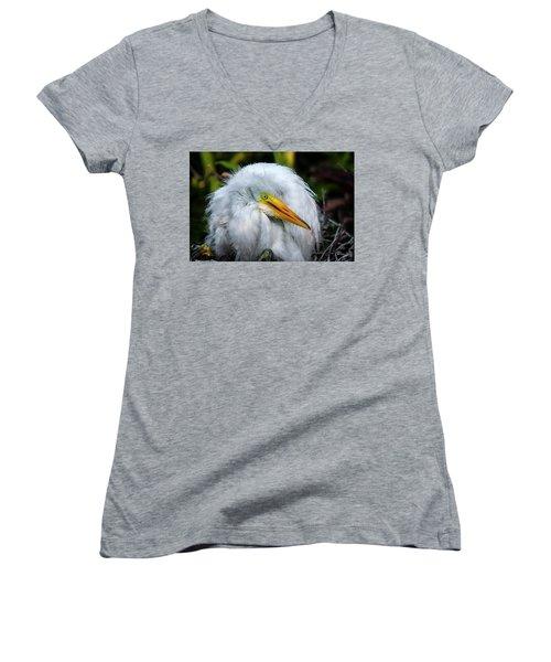 A Little Bit Of Fluff Women's V-Neck T-Shirt (Junior Cut) by Cyndy Doty