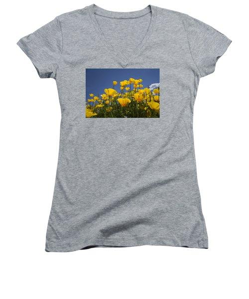 A Little Sunshine  Women's V-Neck T-Shirt (Junior Cut) by Lucinda Walter