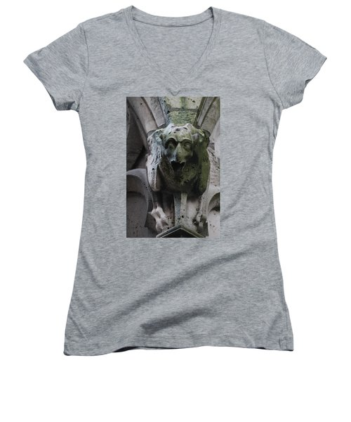 Women's V-Neck T-Shirt (Junior Cut) featuring the photograph A Notre Dame Griffon by Christopher Kirby