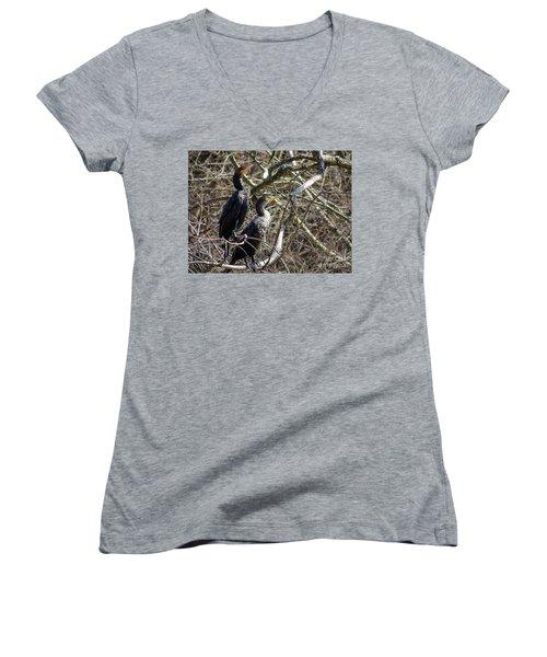 A Pair Of Cormorants Women's V-Neck T-Shirt (Junior Cut) by Melissa Messick