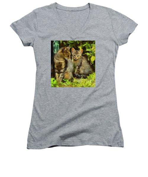 A Pair Of Feral Cats Women's V-Neck T-Shirt