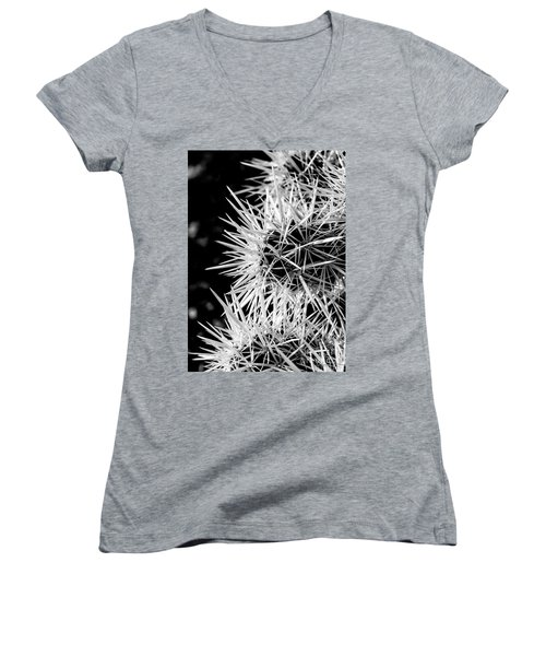 A Prickly Subject Women's V-Neck