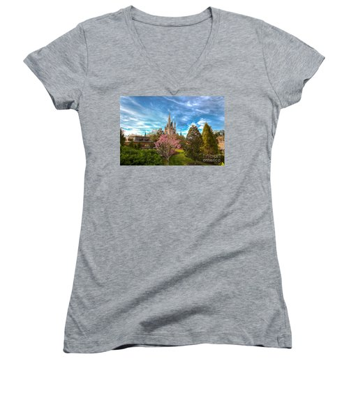 A Quiet Countryside Women's V-Neck T-Shirt