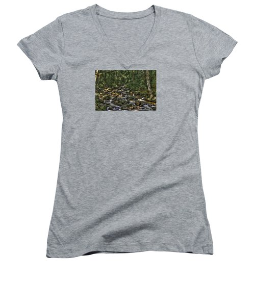 A River Through The Woods Women's V-Neck (Athletic Fit)