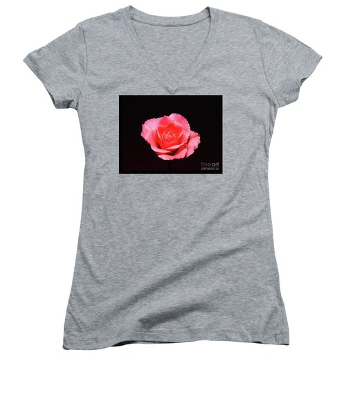 A Rose Is A Rose Is A Rose Women's V-Neck T-Shirt