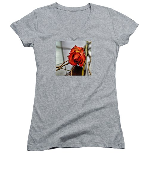 Women's V-Neck T-Shirt (Junior Cut) featuring the photograph A Rose On Bamboo by Diana Mary Sharpton