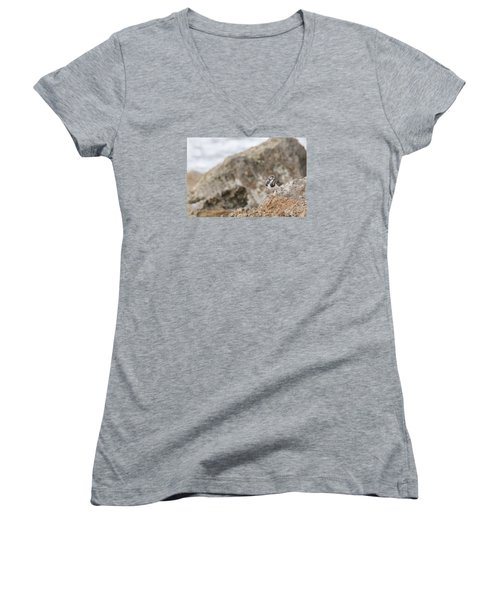 A Ruddy Turnstone Perched On The Rocks Women's V-Neck
