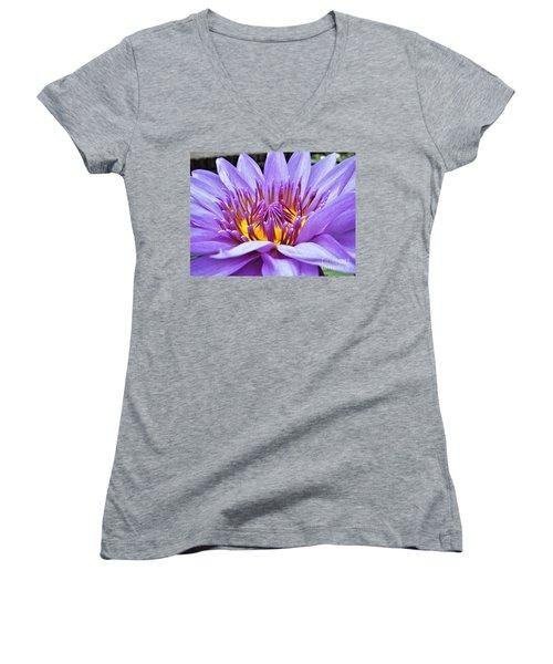 A Sliken Purple Water Lily Women's V-Neck T-Shirt