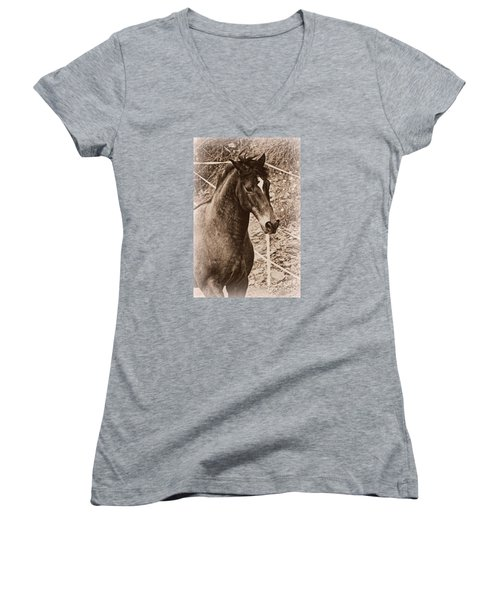A Spanish Noble Women's V-Neck T-Shirt (Junior Cut) by Clare Bevan