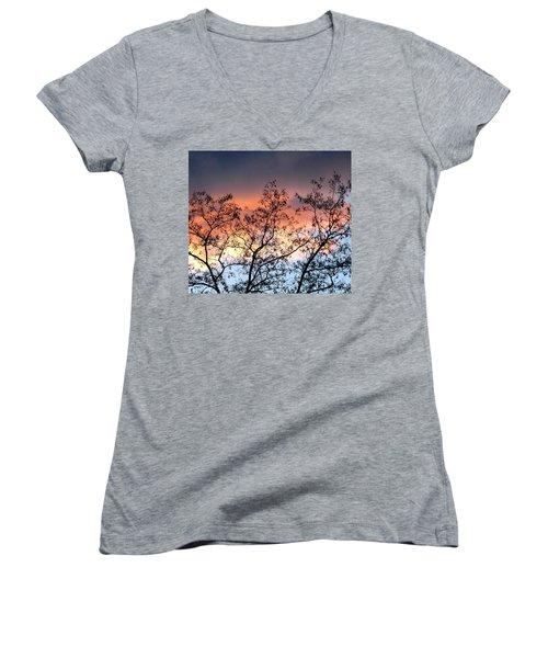 Women's V-Neck T-Shirt (Junior Cut) featuring the photograph A Splendid Silhouette by Will Borden