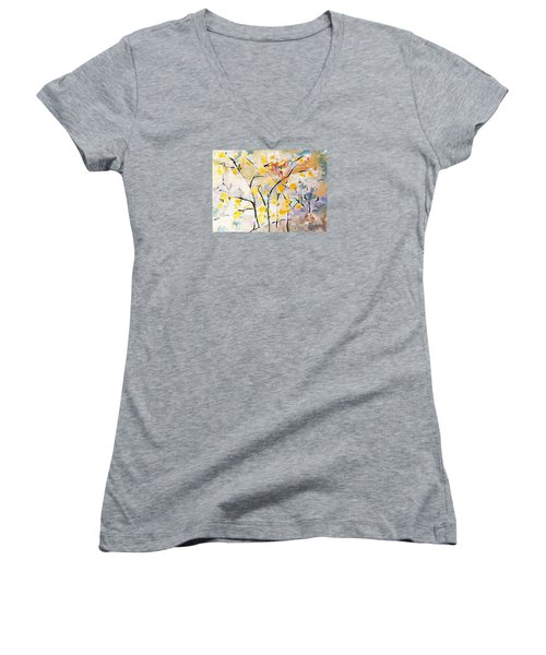 A Study In Qi-3 Women's V-Neck T-Shirt