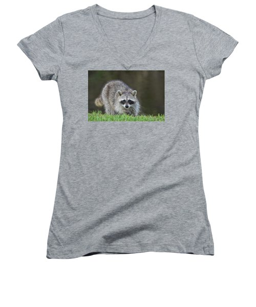 A Surprised Raccoon Women's V-Neck (Athletic Fit)