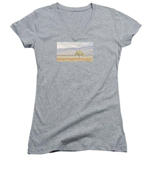A Sweet Scene Women's V-Neck T-Shirt (Junior Cut) by Marilyn Diaz