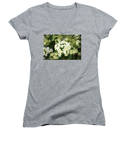 A Thousand Blossoms 3x2 Women's V-Neck