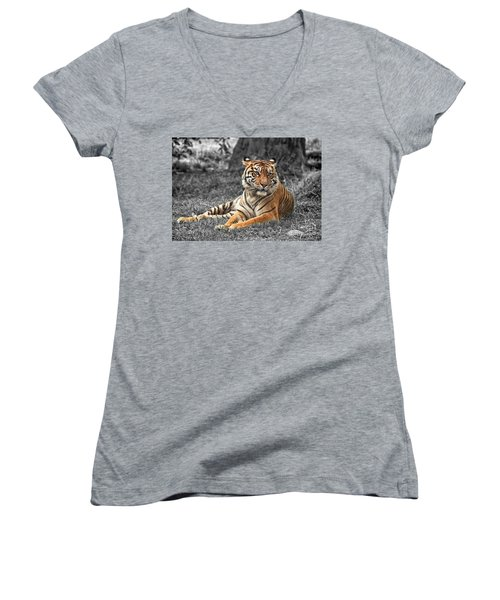 A Tiger Relaxing On A Cool Afternoon II Women's V-Neck T-Shirt