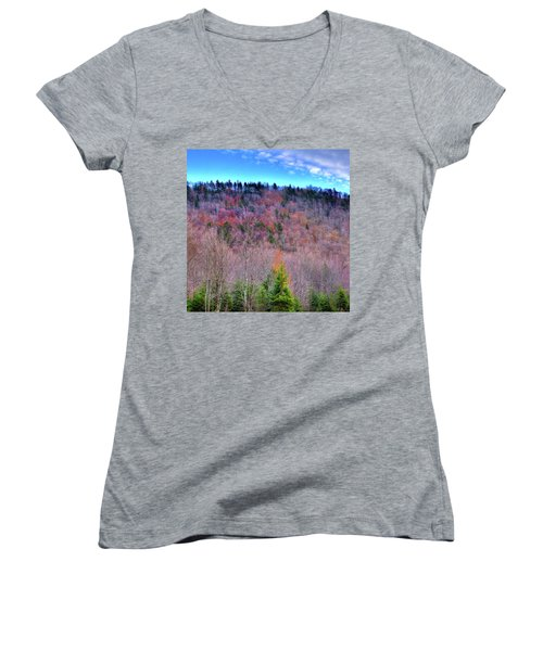 Women's V-Neck T-Shirt (Junior Cut) featuring the photograph A Touch Of Autumn by David Patterson
