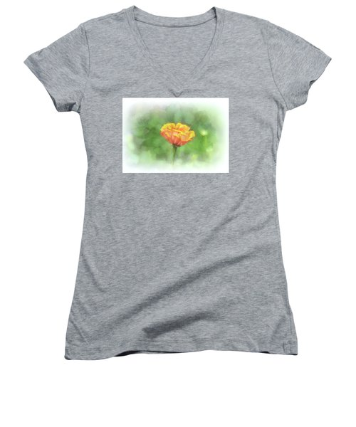 A Touch Of Spring Women's V-Neck (Athletic Fit)