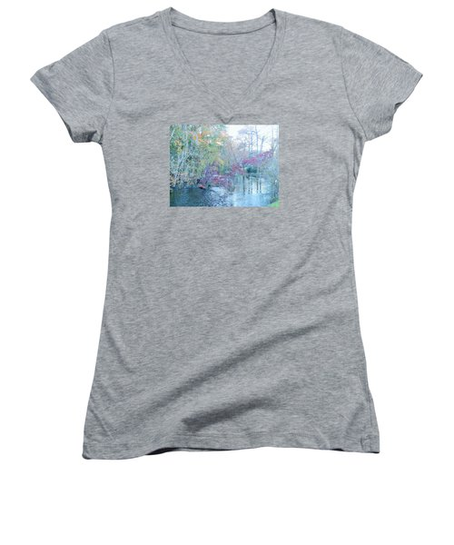 A View Of Autumn Women's V-Neck T-Shirt (Junior Cut) by Kay Gilley