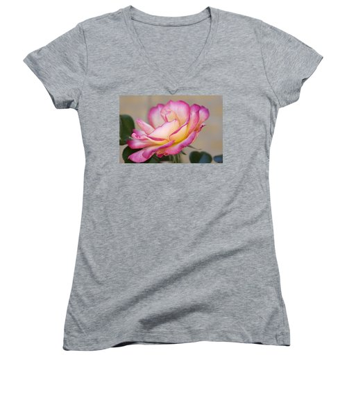 Women's V-Neck T-Shirt (Junior Cut) featuring the photograph A Vision by Joan Bertucci