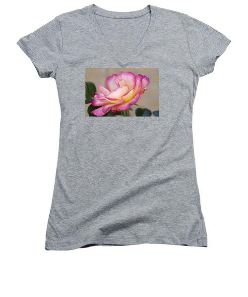 A Vision Women's V-Neck T-Shirt (Junior Cut) by Joan Bertucci