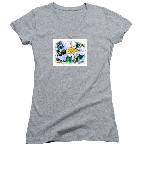A Walk In The Garden Women's V-Neck