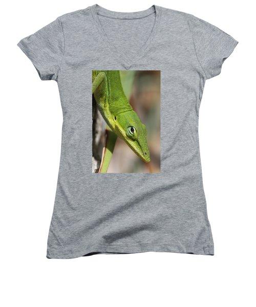 A Watchful Eye Women's V-Neck T-Shirt