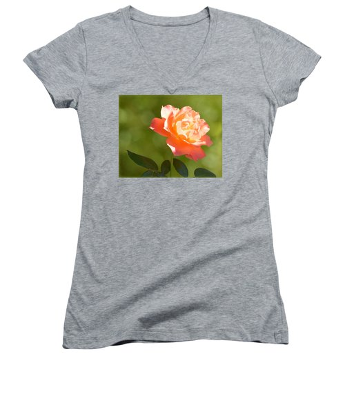 Women's V-Neck T-Shirt featuring the photograph A Well Lighted Rose by AJ Schibig