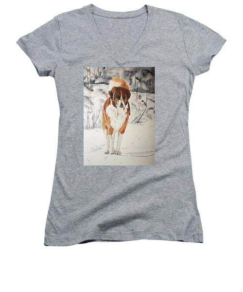 A Winter Walk Women's V-Neck T-Shirt (Junior Cut) by Betty-Anne McDonald