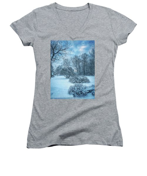 A Winters Tale Women's V-Neck