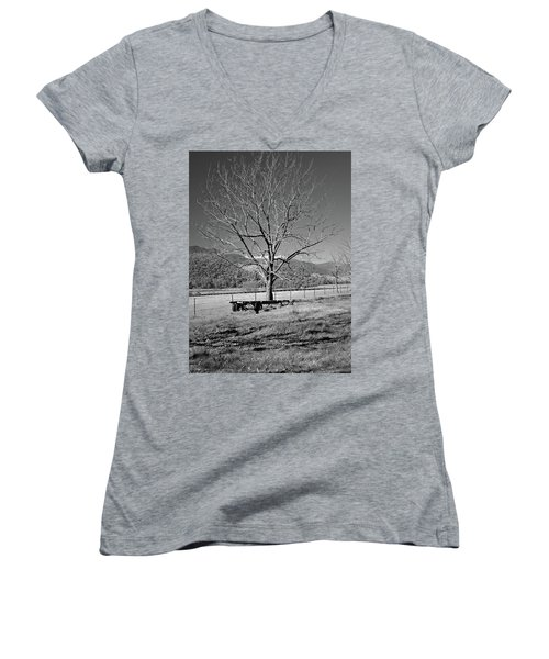 A Wintery Stand Women's V-Neck (Athletic Fit)